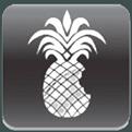 Logo-Redsn0w
